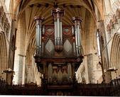 órgão catedral de exeter — Foto Stock