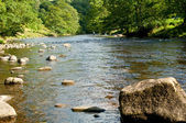 River Wharfe — Stock Photo