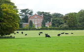 Sutton Hall and Grounds — Stock Photo