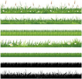 Green grass collection — Stock Vector