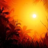 Jungle sunset background — Stock Vector