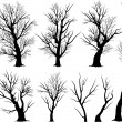 Stock Vector: Creepy tree silhouettes