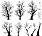 Creepy tree silhouettes — Stock Vector