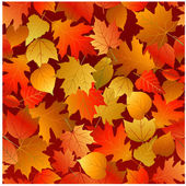 Seamless autumn leaves pattern — Stock Vector