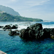 Stock Photo: Coast of Tenerife