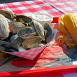 A plate of clams. — Foto de Stock