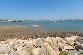 Historic Plymouth Harbor and marina at the low tide. — Stock Photo