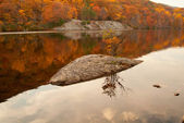 Beautiful fall colors reflecting in the forest lake. — Stock Photo