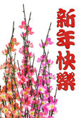 Chinese New Year greeting and plum blossom — Stock Photo