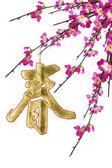 Año nuevo chino caligrafía ornamento y ciruelo en flor — Foto de Stock