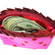 US dollars in lady's pink purse — Stock Photo #6135535