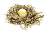 Decorated Easter egg in nest — Stock Photo