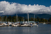 Yachts seascape with dramatic clouds — Stock Photo