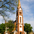 Hungarian reformed church - Debrecen — Stockfoto