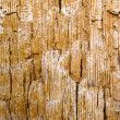 Stock Photo: Old wood inside texture in brown orange hue