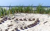 Dunes at the baltic seaside — Stock Photo