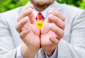 Man holding or protecting yellow flower — Stock Photo