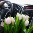 Bunch of tulips in car - Stock Photo