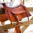 Saddler brown horse mount - Stock Photo