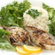 Fried fish with rice — Stock Photo