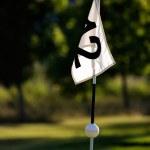 Golfing — Stock Photo #6085428