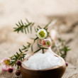 Bath salt — Stock Photo #6085678