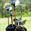 Golf clubs — Stock Photo #6085942