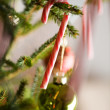 Christmas decoration — Stock Photo #6086021