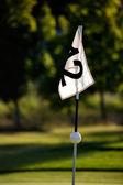 Golfing — Stock Photo