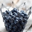 Royalty-Free Stock Photo: Blueberries