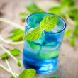 Stock Photo: fresh mint