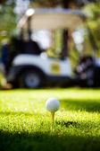 高尔夫球场 — 图库照片