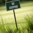 No chipping — Stock Photo #6286108