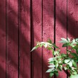 Red wooden wall — Stock Photo #6286313