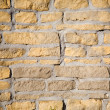 Brickwall — Stock Photo #6286496