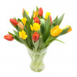 Colourful tulips — Stock Photo #6287166
