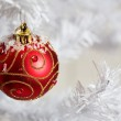 Christmas decoration — Stock Photo #6287229