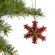 Christmas ornament — Stock Photo #6287423
