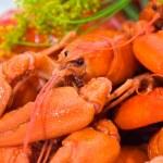 Crayfish — Stock Photo #6287487