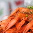 crayfish — Stock Photo #6287502