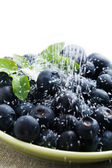 Blueberries with sugar — Stock Photo