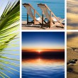 Vacation in tropic — Stock Photo #6336153