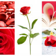 Valentine collage - Stock Photo