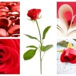 Valentine collage — Stock Photo