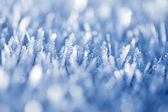 Ice chrystals — Stock Photo