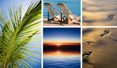 Vacation in tropic — Stock Photo