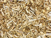 Light mulch — Stock Photo