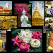 Buddhism in Thailand collage - background with travel photos — Stock Photo