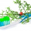 Tooth Paste on the light  blue Dental Brush on white - Stock Photo