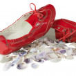 Red lady ballet flat shoes and seashells isolated on white — Stock Photo